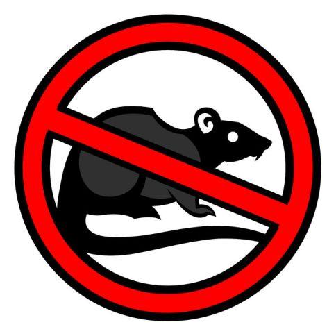 no-rats